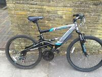 Reebok apex mountain bike