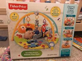 Fisher Pricer Deluxe Play Gym