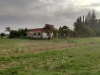 rural house with land. it needs repairs from you while you can stay in for a very low rent.
