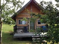 Remote Island Cabin for Rent in Loon Straits