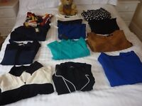 Job Lot of Ladies Dresses, some Brand New, most never worn, beautiful work dresses, all size 16.