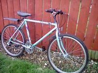 *FULLY SERVICED* MENS LIGHTWEIGHT RALEIGH MTB **FREE DELIVERY HULL**