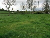 Grazing Paddock for rent for season for ponies,secure,fenced with water