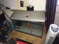 Fish tank and light
