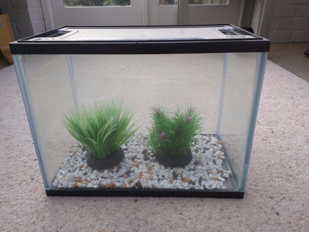Aquarium fish tank northamptonshire - Small Glass Fishtank With Gravel And Two Plastic Plants