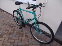 Raleigh Ascender Classic Gents Mountain Bike
