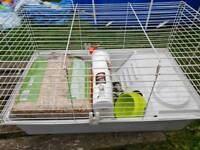 Guinea pig cage and accessorys