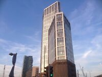 Three Bedroom brand new apartment | Skyview Tower | Stratford