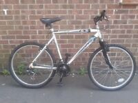 Free Spirit COUGAR X-Large Light Weight Aluminium bike Just Serviced and Ready