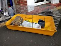 Used Guinea Pig cage