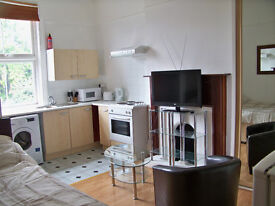 Fully Self Contained Double Studio for Single Professional All Bills & Council Tax included SE136HP