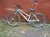 ladies catalyst bike for sale