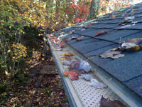 Gutter Cleaning / Repairs / Leafguard