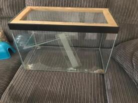 Glass Rodent Tank