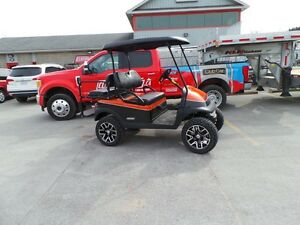2014 Club Car Precedent Custom Painted Golf Cart with Upgrades