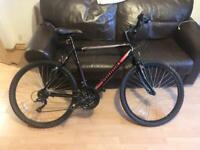 """Bike - Probike 16"""" Escape 18"""" £160 ono"""