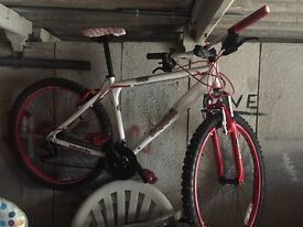 I have a bike 4 sale a few minor scratches hardly used but needs new inner tubes