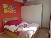 Double bedroom available in a semi-detached house in a quiet area with good motorway and bus links