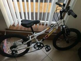 Kids mountain bike in great condition