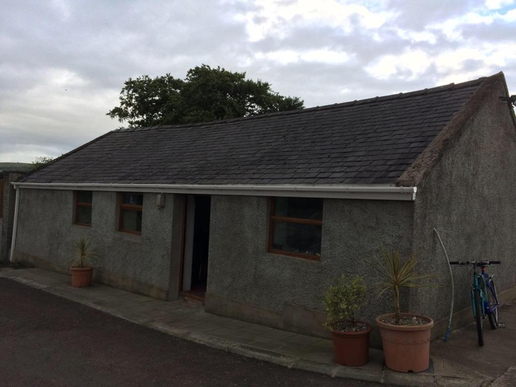 Bangor bluesin Ballymena, County AntrimGumtree - Roof for sale Bangor blues both sides of shed buyer strips ideally