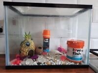 Small fish tank, with all you need