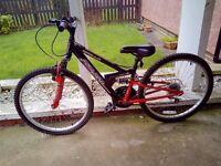 Kids/Junior Bike