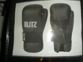 Martial Arts sparing gloves ( Large)