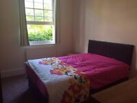 Large Double Ensuite Bedroom available in 2-bedroom flat - newly refurbished, great location
