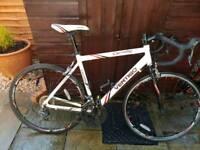 Carnaby Road Bike