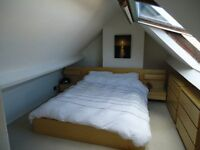 Large Loft Room Available in Friendly Professional Houseshare