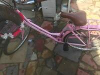 Pink ladies Viking bike