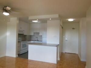 Fully Renovated Jr. 1 Bedroom Steps to Victoria Park TTC