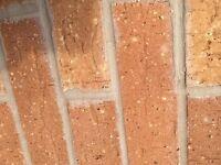 Leftover Bricks x 200