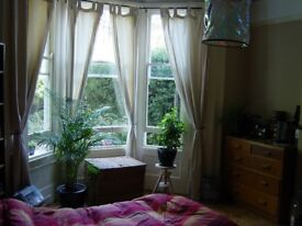 Huge double room in East Finchley, N2. Furnished, lovely garden, public transport very close