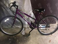 2 Mountain Bikes - easy use for summer! (Collect Only)