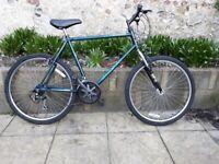Apollo Activator Adult Bike
