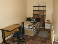 Single Room to Rent.