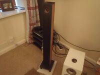 ROLE AUDIO SAMPAN SPEAKERS 3 months old. Cost £1400. Bargain !!! £300 for today only