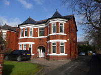 Newly Refurbished Office Space TO LET