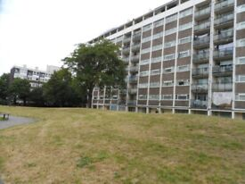 3 BED FLAT TO RENT IN SEPT 2021 JUST 0.2M FROM MOUNT VIEW ACADEMY PECKHAM