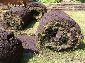 FREE TURF 70m - collection today from Finchampstead