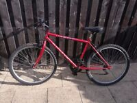 Red mountain bike.. offers
