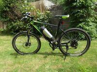 Greenedge Electric mountain bike