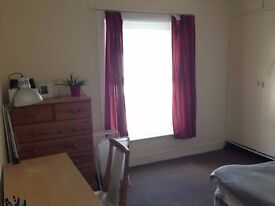 Cheap Room for Rent for Summer (or even entire academical year)