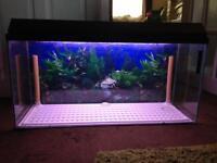 3 Foot Long Fish Tank / Aquarium