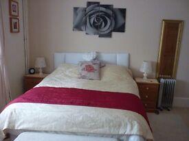 Double en-suite room 30 mins from Bath & Salisbury. 8 min walk to train station, close town centre.