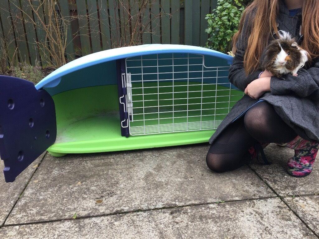 Plastic light outdoor or indoor guinea pig or rabbit hutch for Outdoor guinea pig hutch