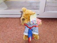 Teddy Bear on a Bike