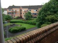 Bright room with balcony to rent in Denniston