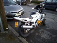 Yamaha YZF600R Thundercat for sale